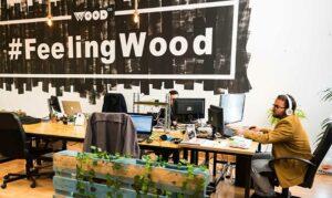 WoodWork-1