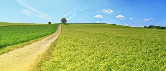 panorama de paisaje rural coworkings