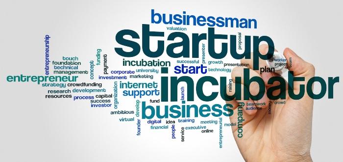 Palabras-sobre-incubadora-empresarial